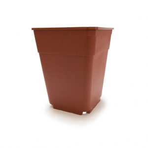 terracotta pot for professional growing