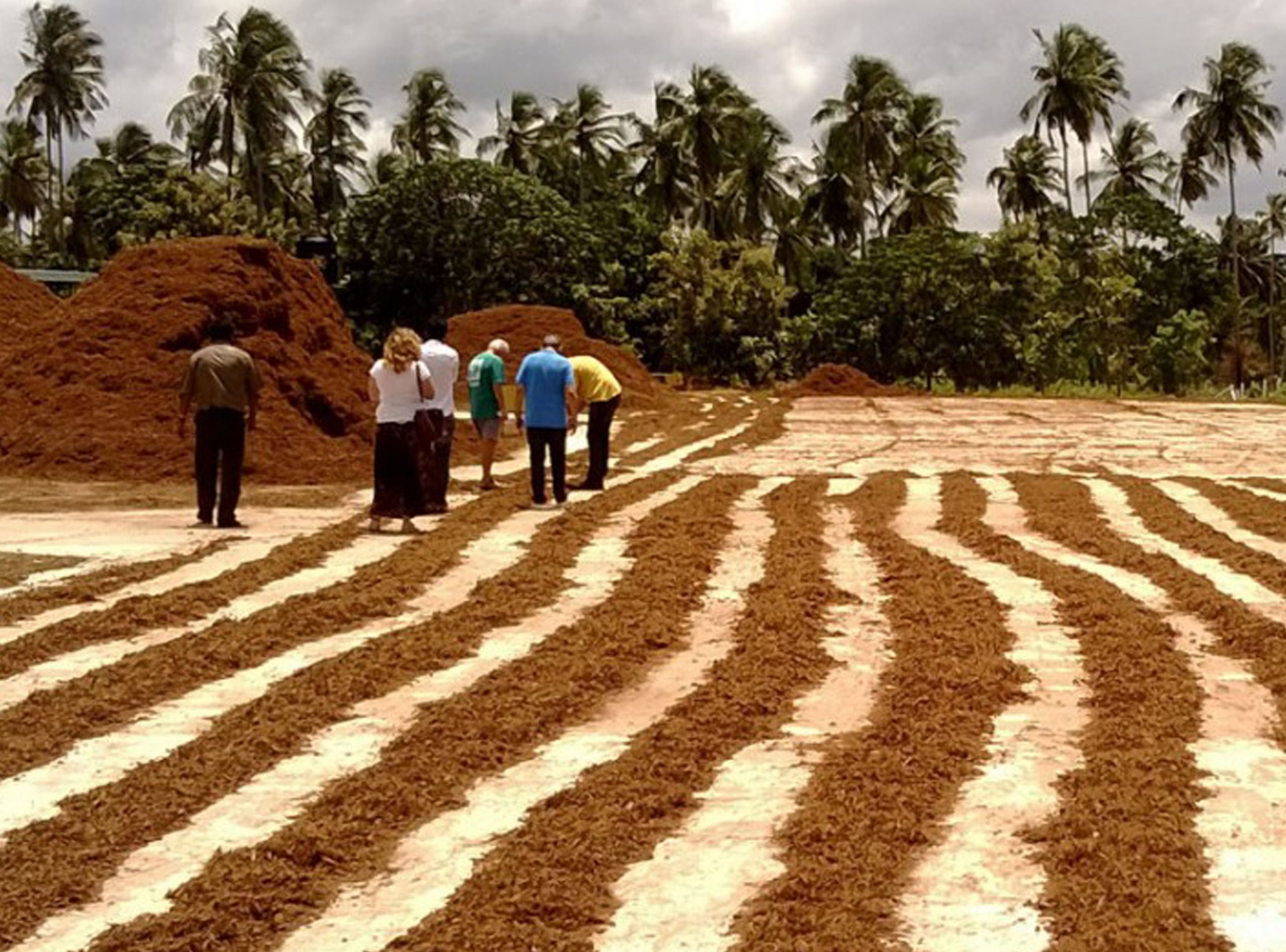 coir peat manufacturers